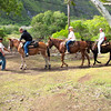 "Hiking up/down this famous trail isn't the only option... in fact, most people do the mule ride... check out the details on our blog post at <a href=""http://nancyandshawnpower.com/molokai-mule-ride-hike-kalaupapa-national-park/"">http://nancyandshawnpower.com/molokai-mule-ride-hike-kalaupapa-national-park/</a>"