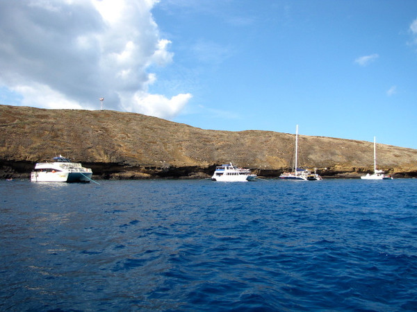 As you can see by the boats and catamarans at Molokini, it's one awesome place to drop anchor and explore the waters!