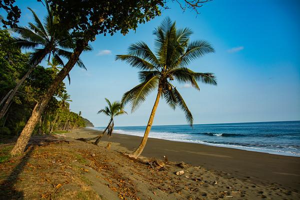 OSA PENINSULA OF COSTA RICA