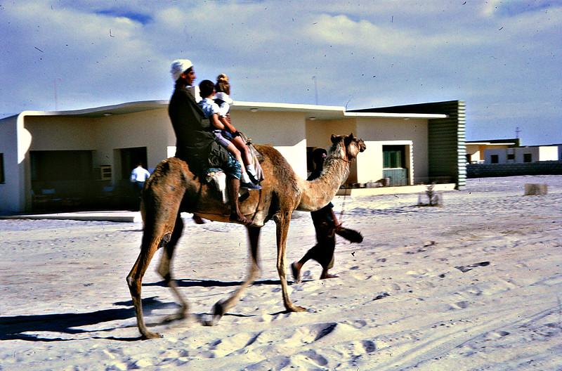 Birthday Party Camel Rides<br /> Dubai-1966