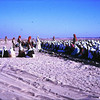 Sunrise Prayers<br /> Eid al-Fitr in Al Ein Oasis<br /> Abu Dhabi-1966