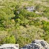 Mexico, Calakmul, Pyramid VIII