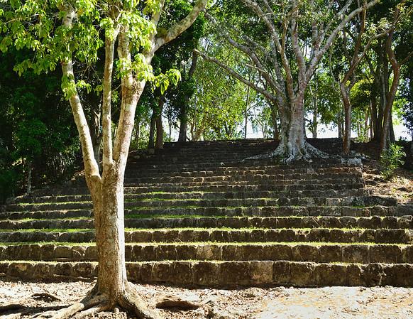 Mexico, Kohunlich, 27 Steps