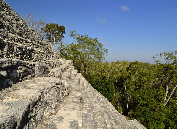 Mexico, Calakmul, Steps to the Top