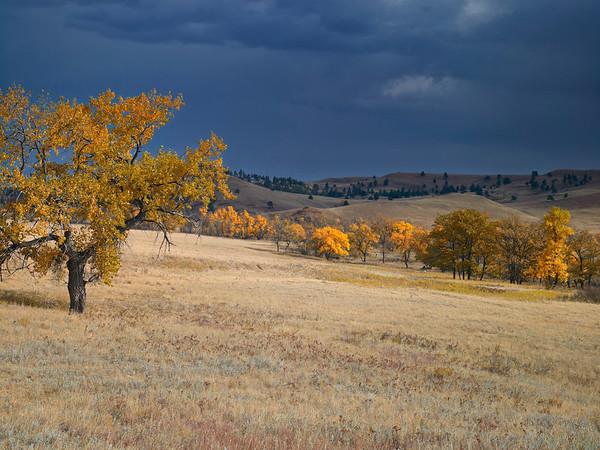 Storm, Wyoming
