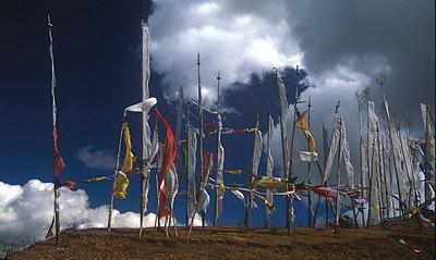 Prayer flags at Cheli La