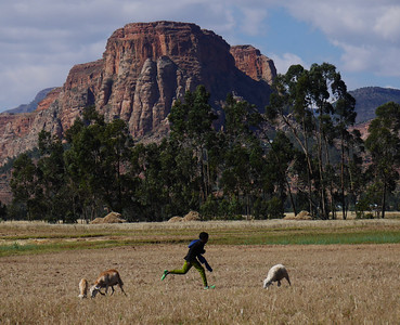 Tigray Trek- Day 1