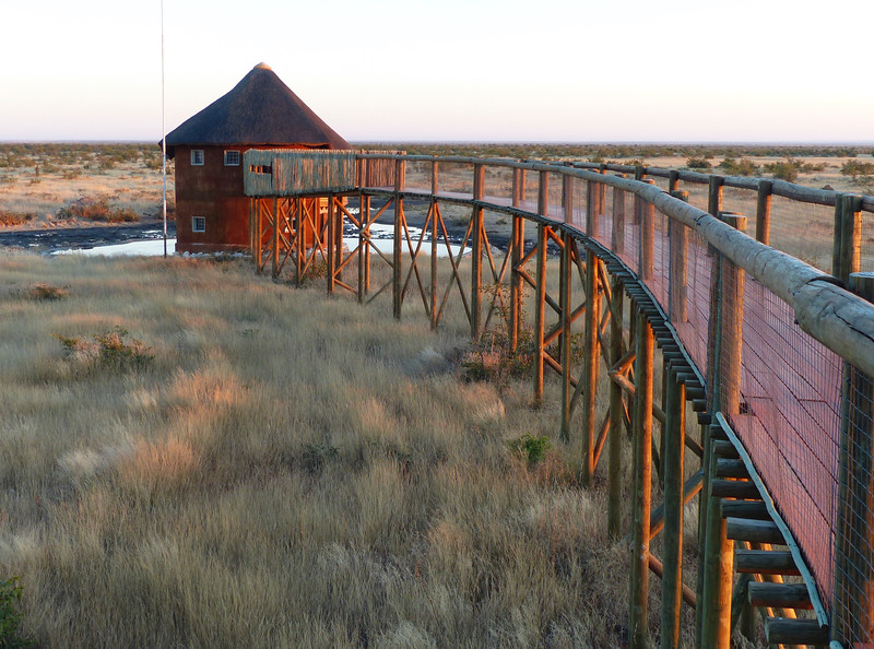 The viewing platform at Ofifantsrus Camp. It has a great view of a waterhole.