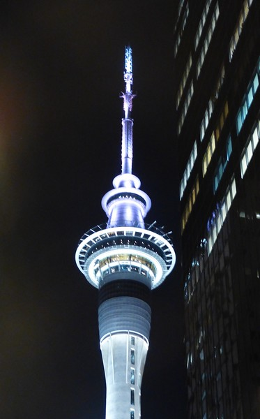 The Sky Tower at night.