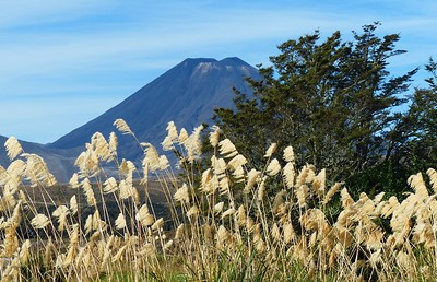 We have a clear view of Mt. Ngauruhoe as we start out. But the forecast is for rain.