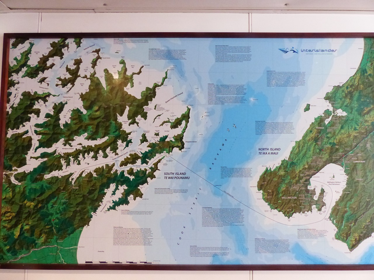 The ferry ride across from Wellington to the South Island  is about 3 ½ hours. There are a maze of channels and islands when you reach the South Island. Unfortunately, our trip wasn't long enough to spend any time there.