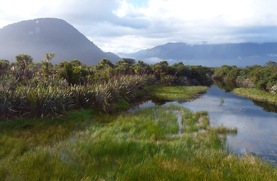 View from Haast Visitors Center.