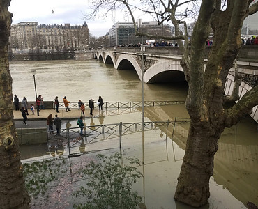 The Seine was in flood when we arrived in Paris. The walkways along the river involved some serious wading.