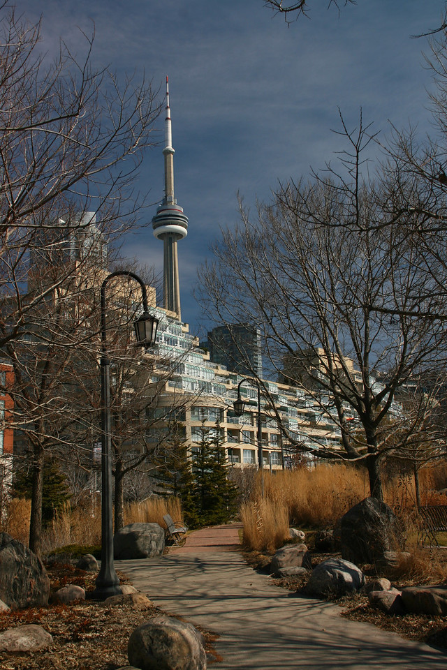 CN tower from the Toronto Music Garden. This beautiful park near the waterfront was designed by the world famous cello player, Yo-Yo Ma.