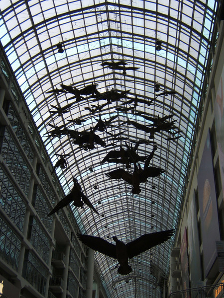 Display of Geese in the Eaton Center