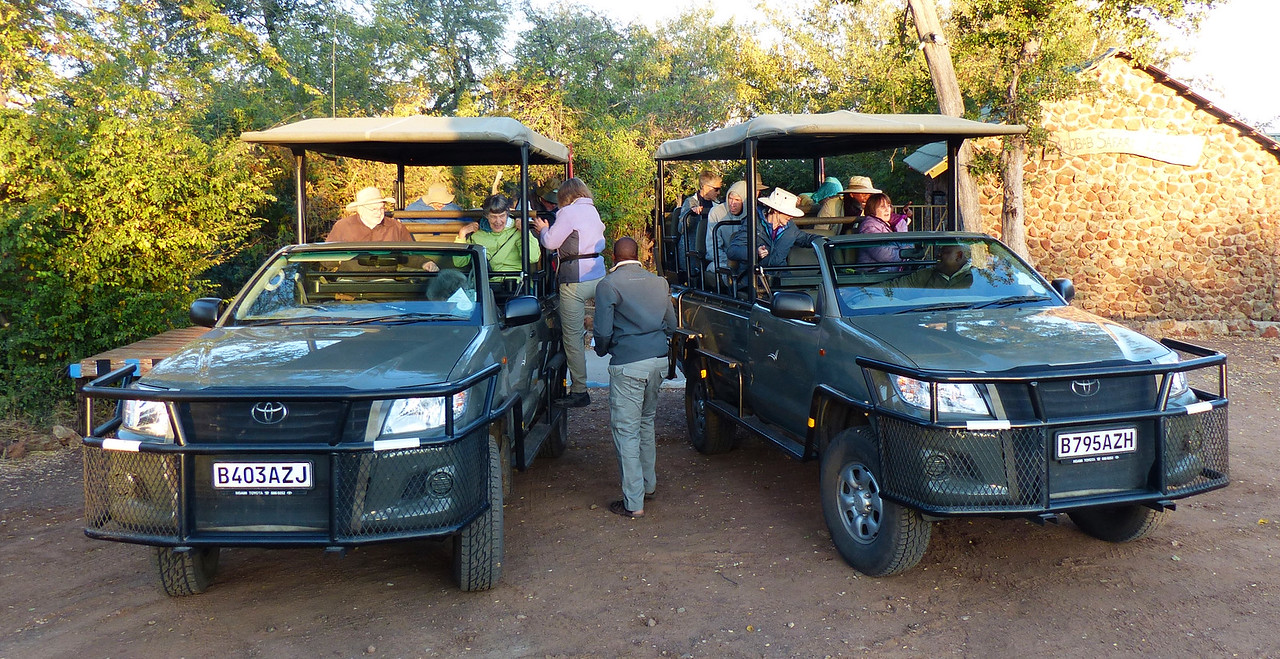 Our game viewing was done in these vehicles. We had a group of 14 plus 2 drivers and 3 guides. Each jeep can carry 11 people, so we had some extra room. The back rows are higher so it was easy to take unobstructed photos.