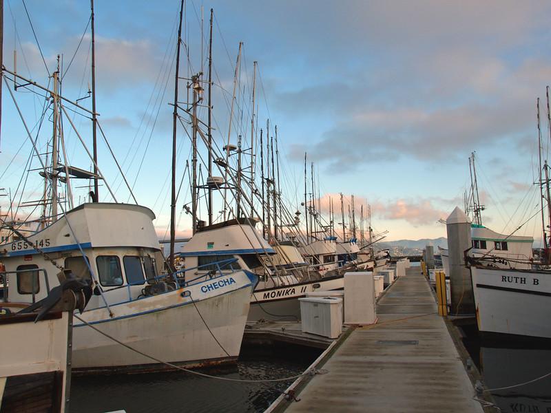 Cool Morning at the Marina