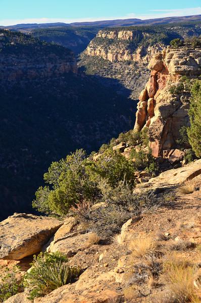 Navajo Canyon Overlook