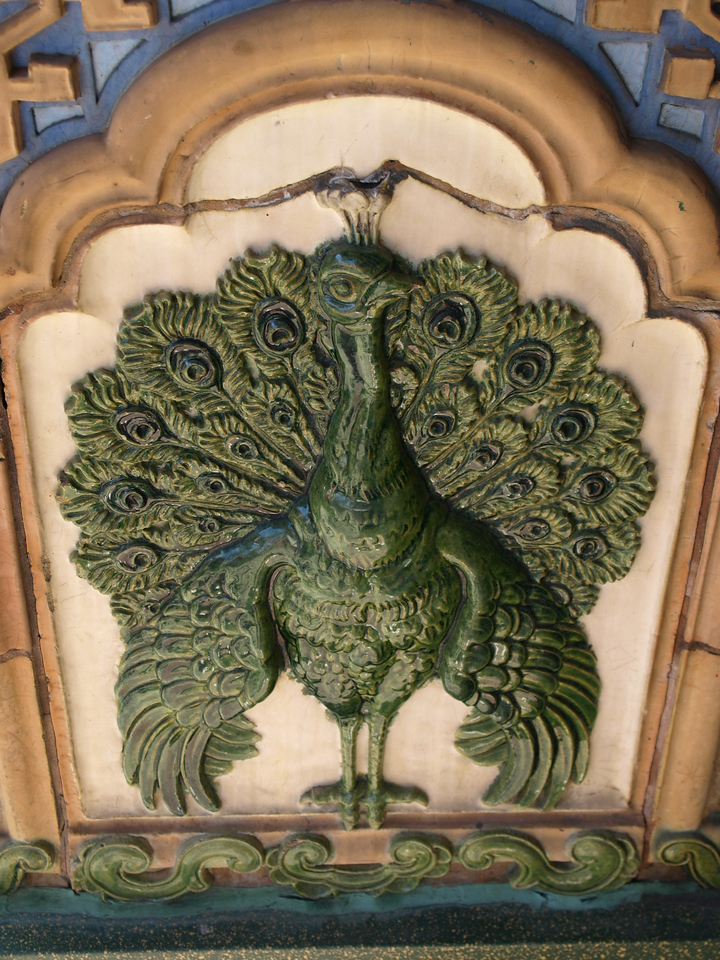 Peacock in Jade
