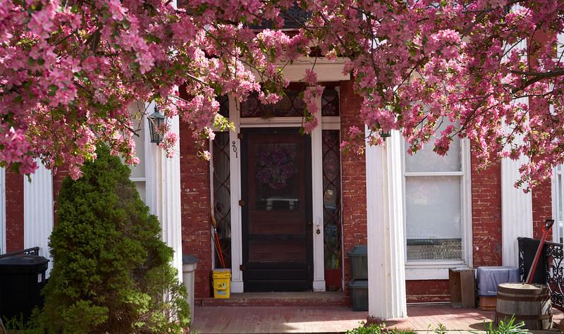 Flower framed doorway