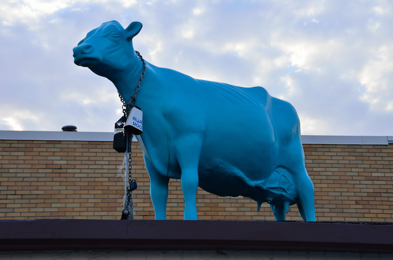 Look for the Blue Cow!  That's where you will find Sherman's Ice Cream!