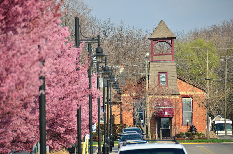 Flowering trees lead the way to The Vineyard restaurant in South Haven