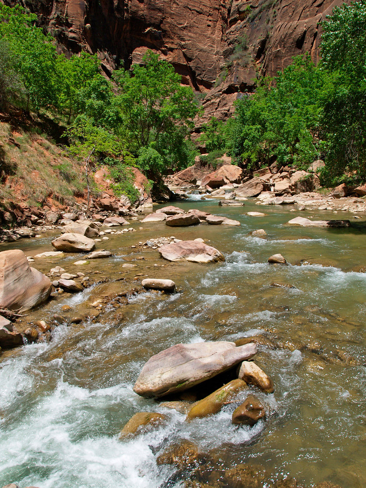 The Virgin River emerging from the Narrows in Zion