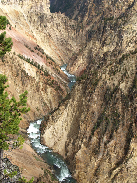 Yellowstone River flowing through the canyon