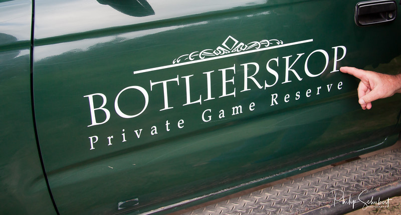 Botlierskop Private Game Reserve Safari Wagon