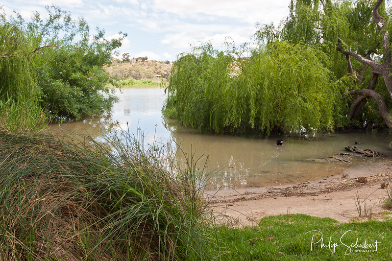 Willow Haven - Mannun Campground