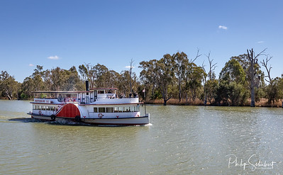 """Mildura, Australia - Sep 20 2018: The historic paddle steamer """"Rothbury"""" was built in 1881 and now operates popular tourist cruises on the Murray River in New South Wales."""