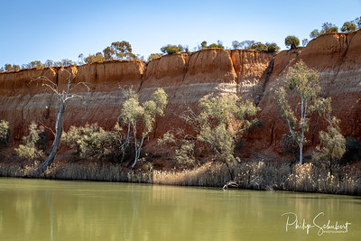 Landscape view of the red banded cliffs on the banks of the Murray River near Mildura in Victoria, Australia.