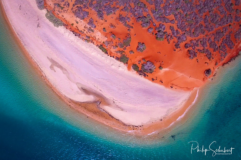 Peron Peninsular - Shark Bay