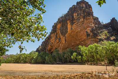 Steep limestone bluff at the entrance to Windjana Gorge where the Lennard river carves a spectactular gorge through the Napier Range.