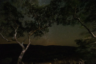 Milky Way framed by Snappy (Ghost) Gums, Karijini National Park