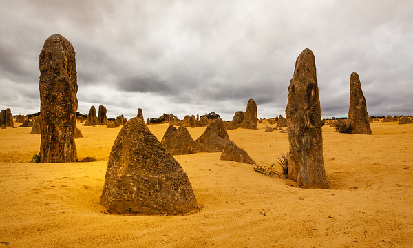 Landscape view of the limestone pinnacles in the Pinnacles National Park, Cervantes, Western Australia
