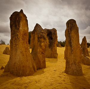 Sentinels in the Pinnacles Desert