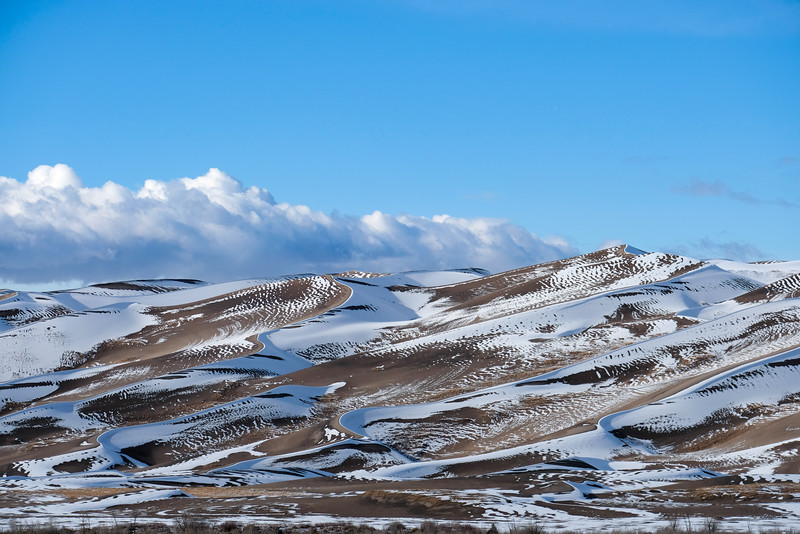 Sand Dunes and Snow