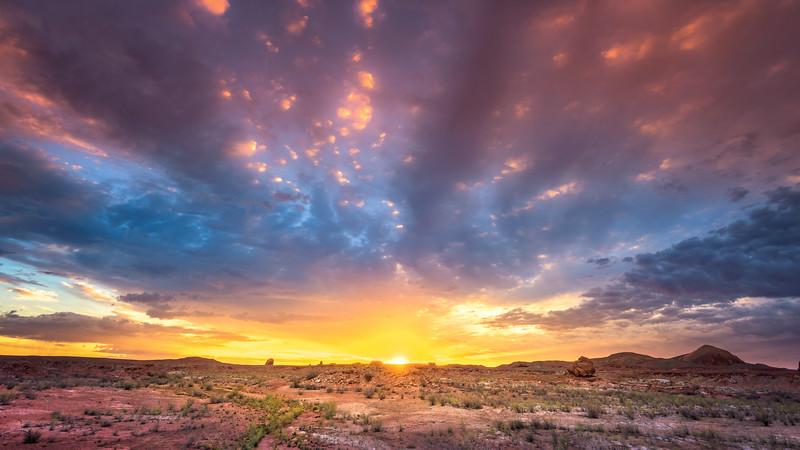 """""""Desert Sun"""" @ Lake Powell (Bullfrog / Utah)"""