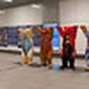 Buddy Bears Panorama