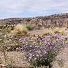 Chaco Canyon-60