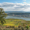 Near Germania monument - looking towards the Rhine