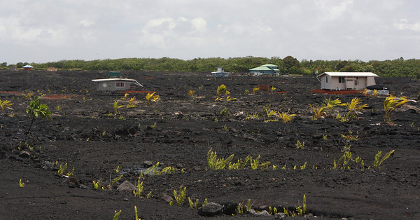Houses in the Lava Field