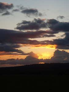 Sunset Overlooking a Pasture