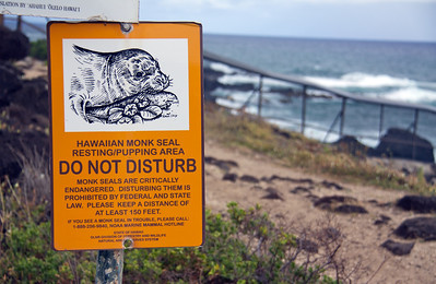 Sign Warns about Disturbing Hawaiian Monk Seals
