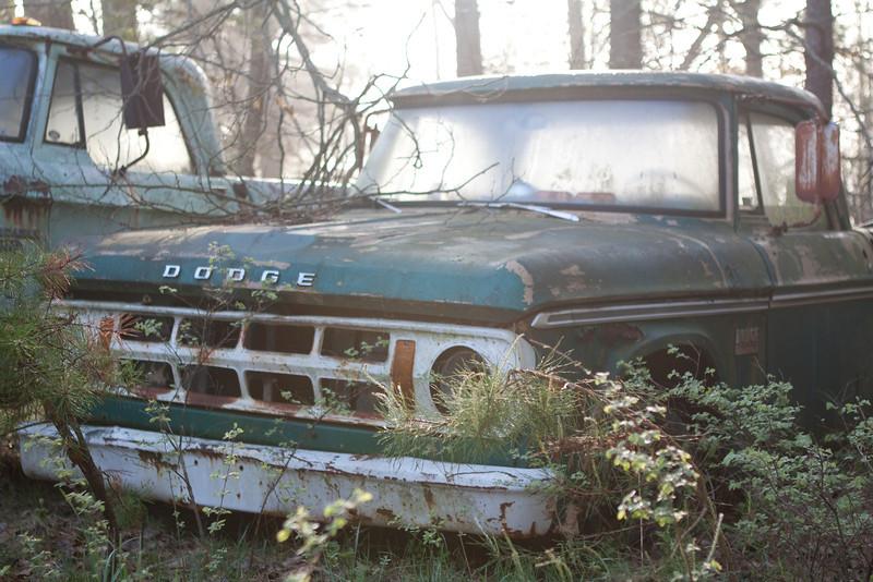 Blue Ridge-328