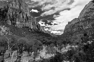 Zion National Park in monochrome