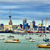 A view of downtown Auckland from the edge of Okahu Bay.