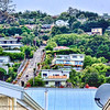 A view of Baldwin Street from our bus. The steepest part is near the top and we were not allowed to go up and take pictures to protect the privacy of the residents.<br /> <br /> Guinness officially recognizes Baldwin Street as the world's steepest street at a 35% grade.