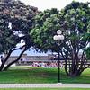 Frank kitt's public park by the harbor.